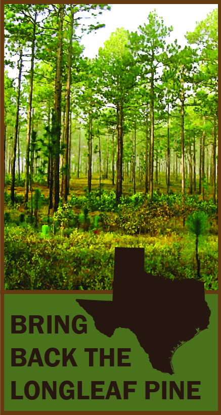 Texas Longleaf Pine Taskforce Logo