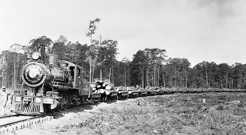 Forest Industries and Products-Longleaf Logs Headed to Mill-Weirgate, Photo 12