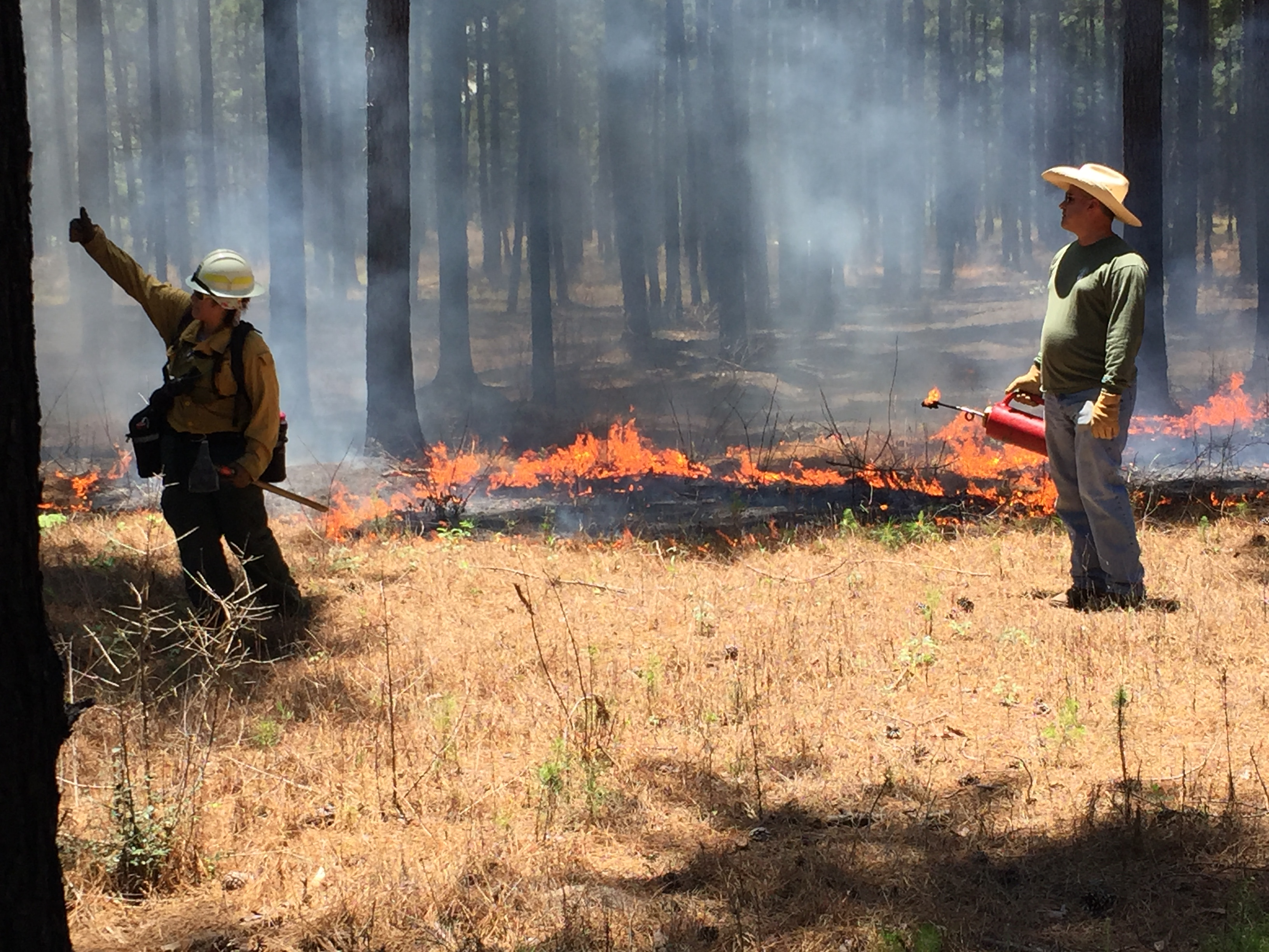 Prescribed Burning Course in Lufkin, TX. Photo credit: Kent Evans (1)