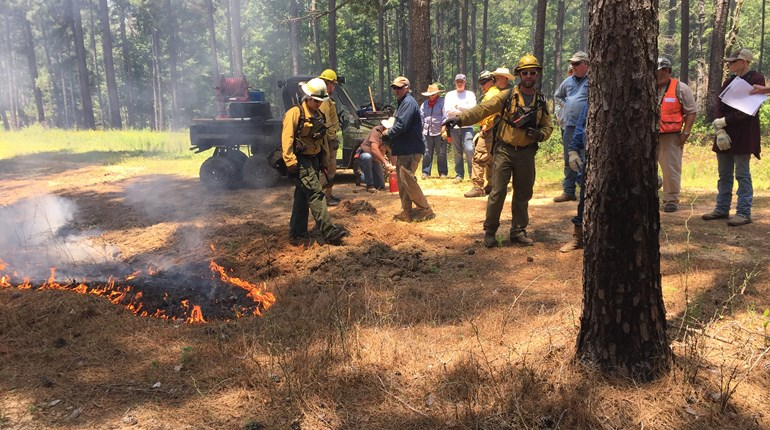 Certified Prescribed Burn Manager Course in Lufkin, TX.