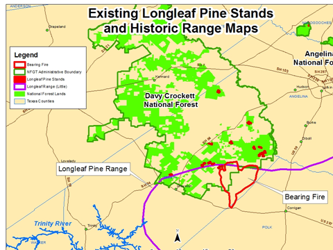 Existing Longleaf Pine Stands and Historic Range Maps